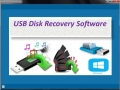 USB Disk Recovery Software 4.0.0.32 screenshot