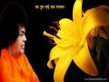 Sri Satya Sai Baba 1.0 screenshot
