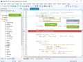 Rapid PHP 2016 14.3 screenshot