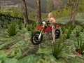 Forest Bike 3.0 screenshot