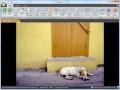 VisualiXit Minos 1.1 screenshot