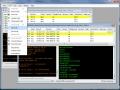 Pretty Good Terminal 4.2.26.1 screenshot