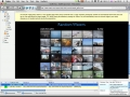 OutWit Hub for Windows 4.0.4.29 screenshot